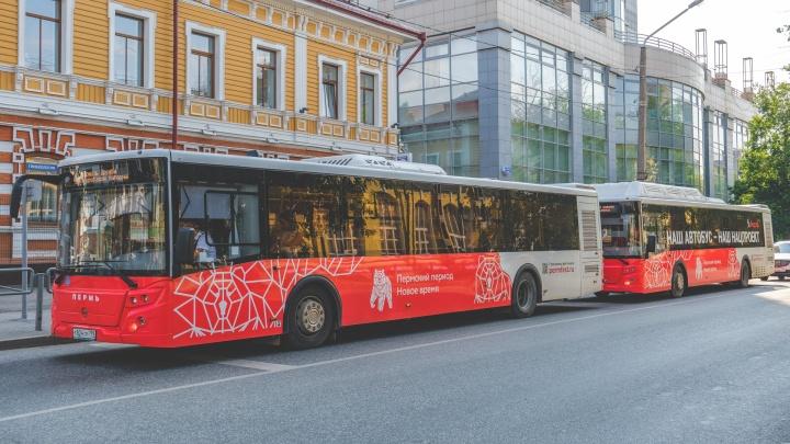 В дни выборов в Перми увеличат количество автобусов