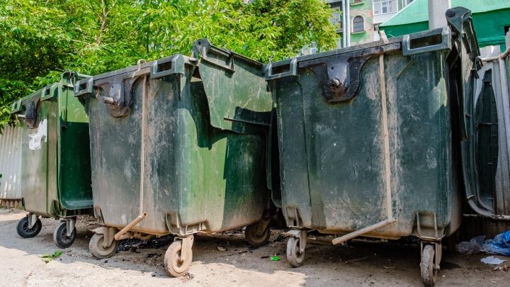 В Прикамье пересмотрят тариф на вывоз мусора за 2019 год