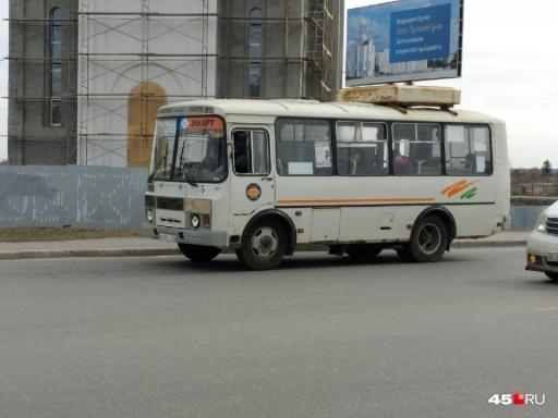 В Кургане для голосующих за поправки в Конституцию дачников запустят бесплатные автобусы