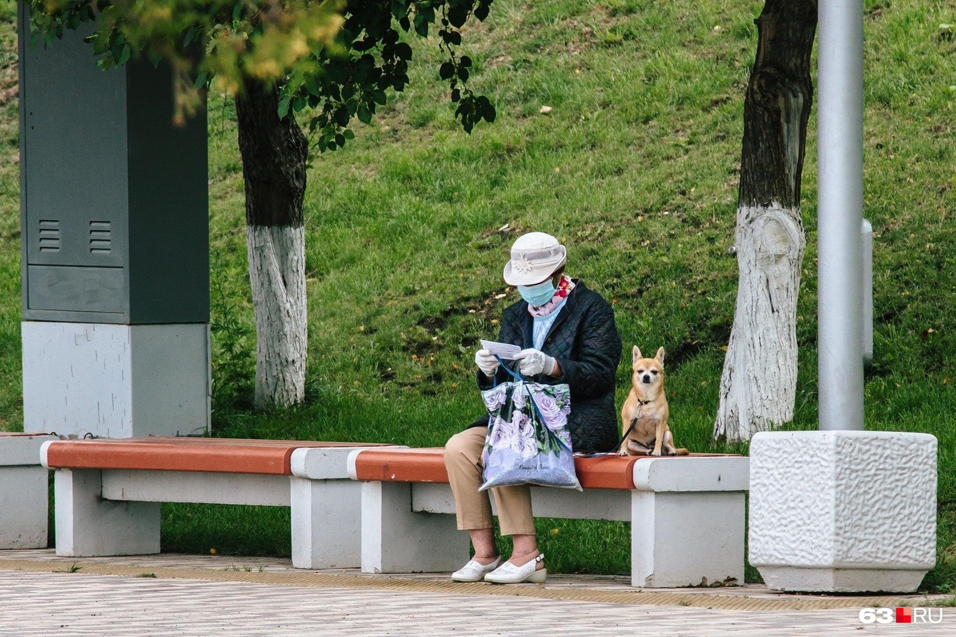 Собаководы стали особой кастой в этой пандемии: с животным можно было спокойно перемещаться по улицам