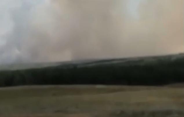 Вот-вот дома загорятся: степной пожар в Волгоградской области угрожает селу Липовка