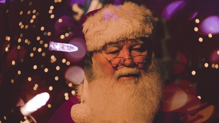 Ярославцам дали номер телефона Деда Мороза и Снегурочки