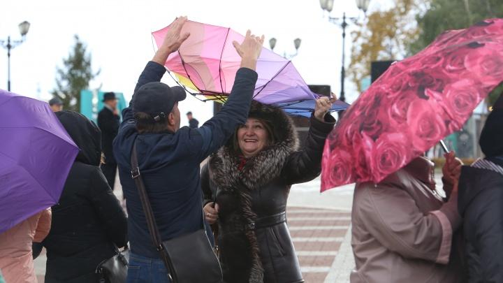 МЧС Башкирии вновь предупреждает о сильном ветре