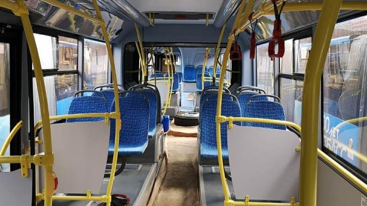 Транспортная реформа в Новокузнецке: в «ПитерАвто» прокомментировали информацию о сговоре с властями