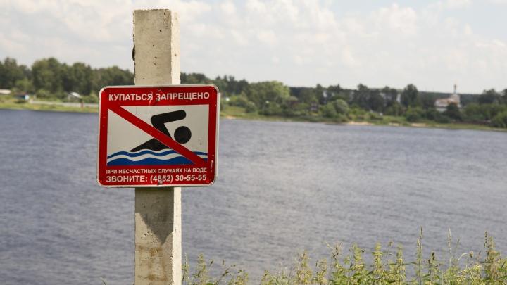 В Переславском районе в пруду нашли тело мужчины: что случилось