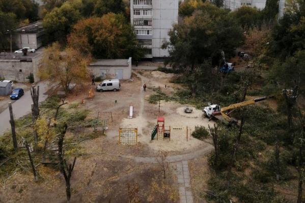 Часть деревьев во дворе дома на Металлургов уже подверглось тотальному «омоложению»