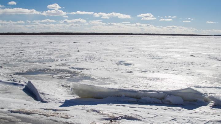 В Архангельской области ледоход должен начаться в первых числах апреля