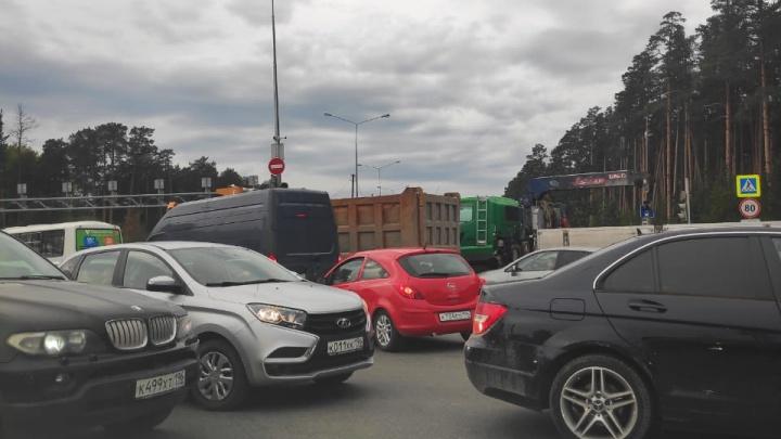 Улица Светлореченская встала в огромную пробку из-за неработающего светофора
