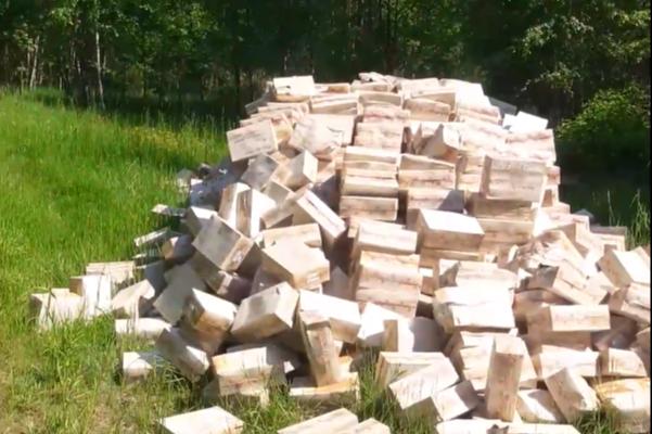 Под Ярославлем нашли свалку просроченных лекарств. Видео