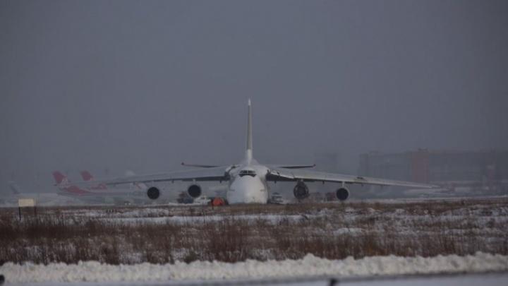 Авиакомпания «Волга-Днепр» приостановила эксплуатацию самолетов «Руслан» после инцидента в Толмачёво