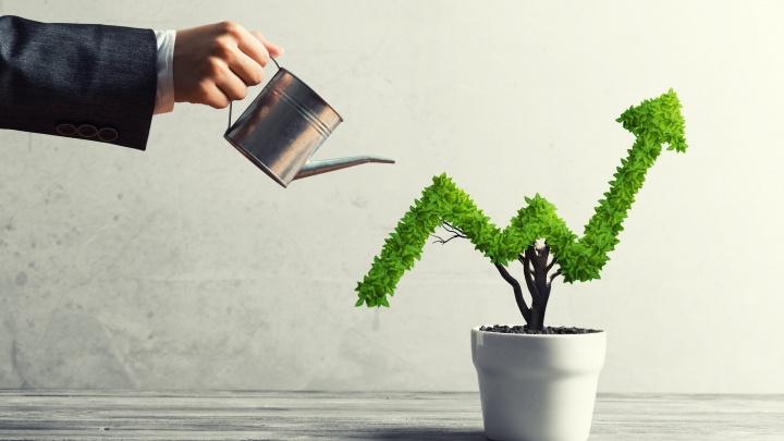 Как новосибирцам инвестировать в IPO на американском рынке и заработать на этом (спойлер: это просто)