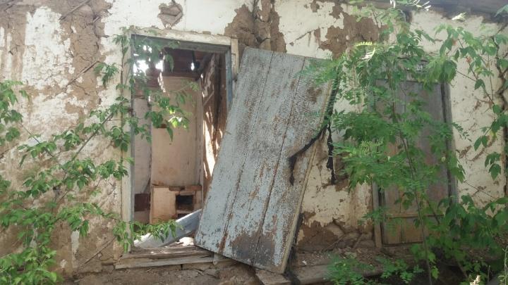 «Полгода получал ее пенсию»: под Волгоградом сын убил 90-летнюю мать и закопал тело в сарае