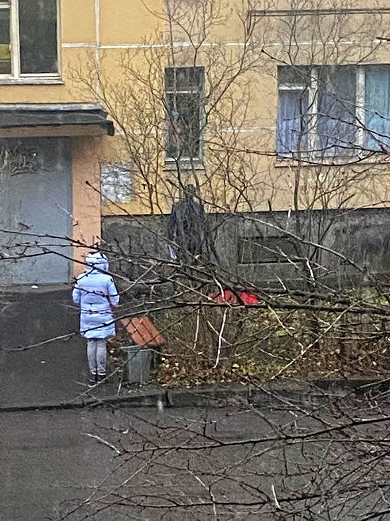 момент переговоров Игоря Ивкина с Денисом Бельтюковым. за уговорами наблюдает жена Бельтюкова