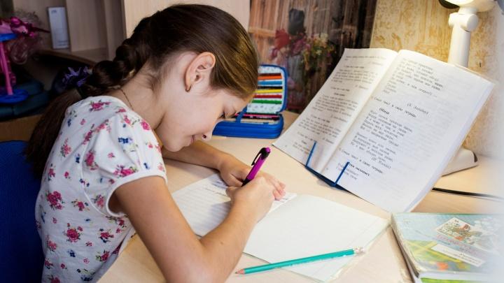 Не надо выполнять роль педагога: власти объяснили, что требуется от родителей при дистанционном обучении