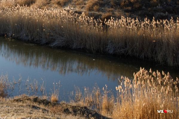 Тело женщины обнаружили в пруду Кировского района