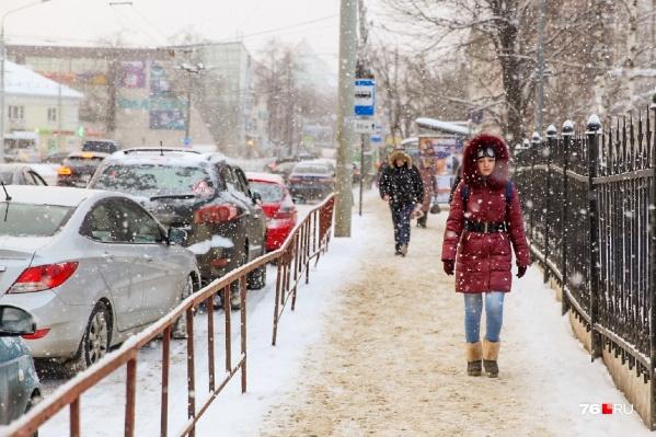 В этом году в Ярославле выдалась небывало тёплая зима