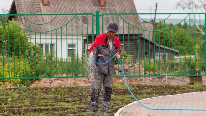 Налог на воду и штраф за борщевик: разбираемся в садовых законах нового сезона
