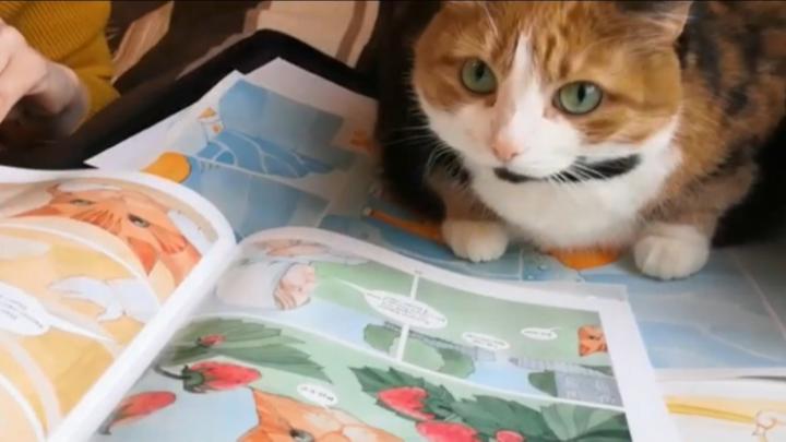 Кошка Бася уже читает комикс по Абрамову. Откройте его и вы — листаем издание онлайн