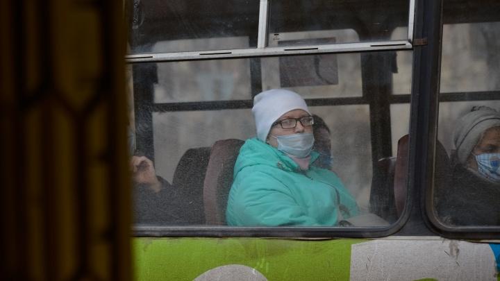 С 2021 года в автобусах Архангельска будут ездить «тайные пассажиры»