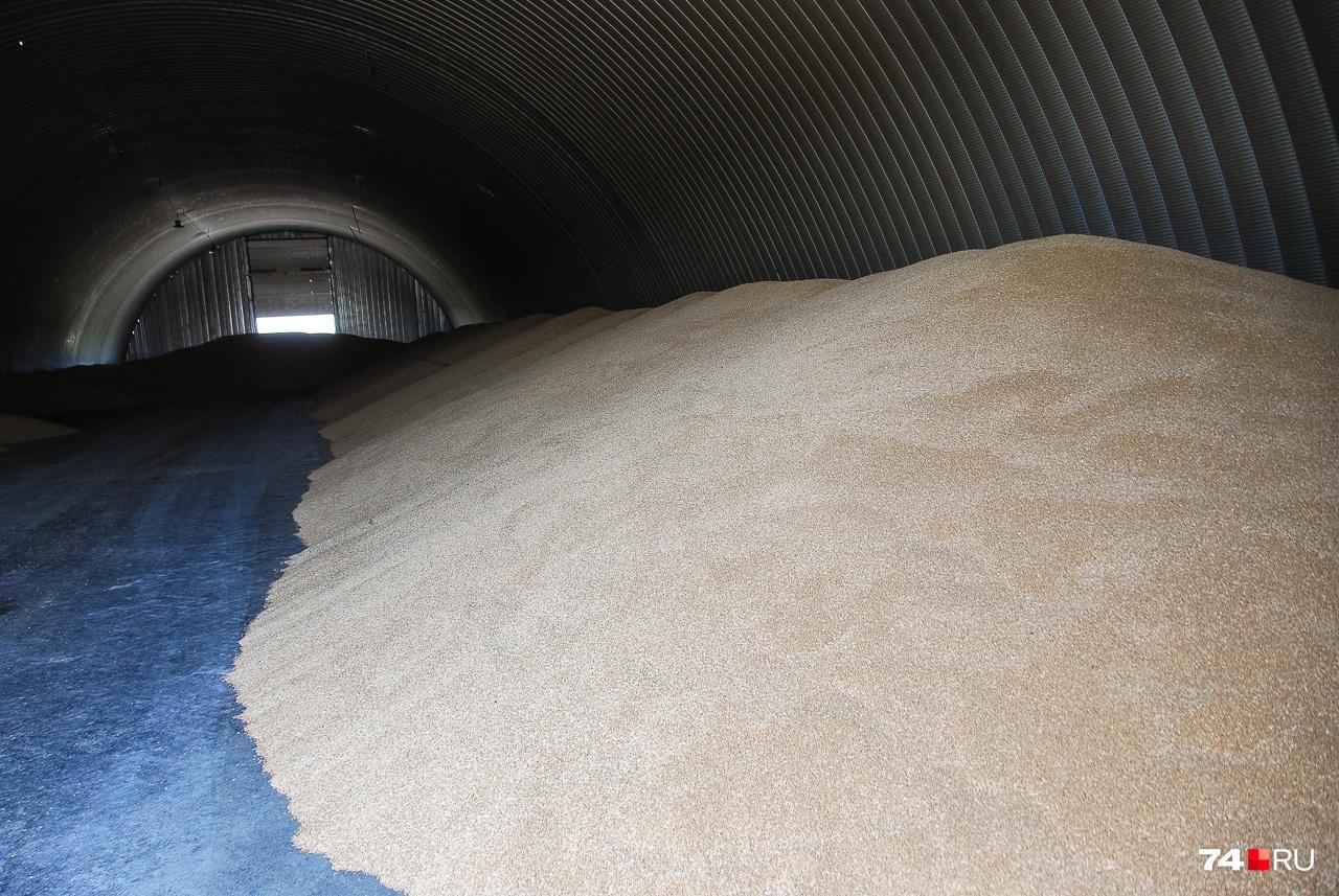 До запуска новых зернохранилищ продукт хранится в ангарах
