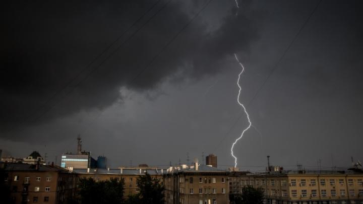 МЧС предупредило новосибирцев о мокром снеге и падающих деревьях