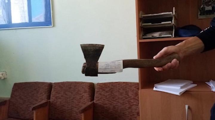 Вооруженные люди в масках украли баранов с фермы в тюменском селе