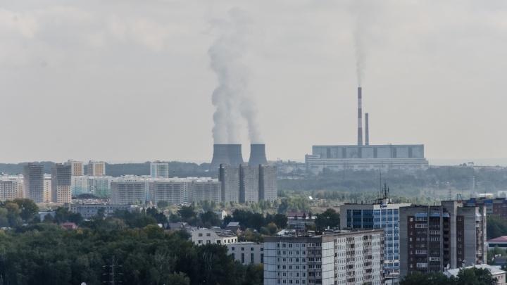 «Едкий навозный запах»: новосибирцы в очередной раз пожаловались на вонь в центре города