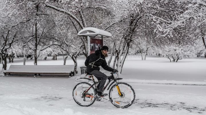 В 2021 году на Новосибирскую область могут обрушиться аномальные морозы и жаркая весна