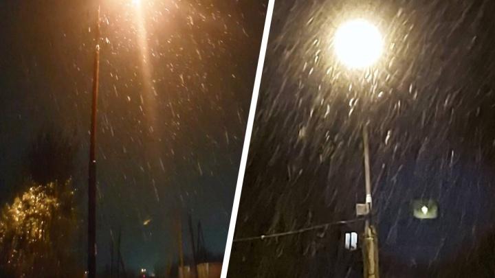 Осень уже кончилась и пришла зима? На Северном Урале внезапно пошел снег: видео