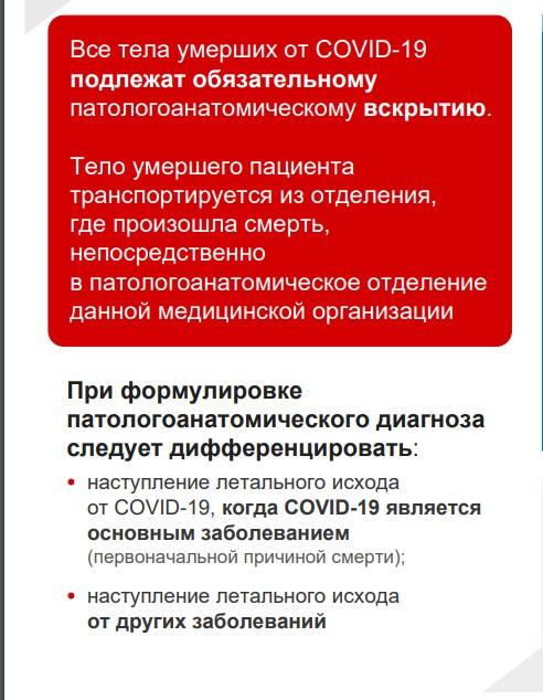 """Федеральный Минздрав приготовил <a href=""""https://static-2.rosminzdrav.ru/system/attachments/attaches/000/049/997/original/COVID-19_V5_Final.pdf"""" target=""""_blank"""" class=""""_"""">инфографику про врачей</a>, и там есть данные по работе патологоанатомов"""