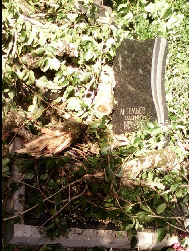 Разрушения после шторма на Большеохтинском кладбище