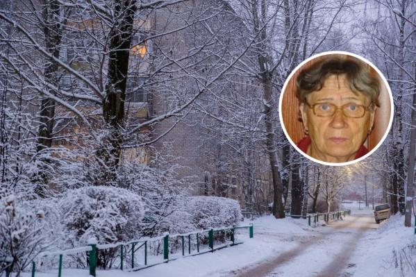 Елизавета Ганина исчезла 11 декабря. Сейчас ведутся ее поиски