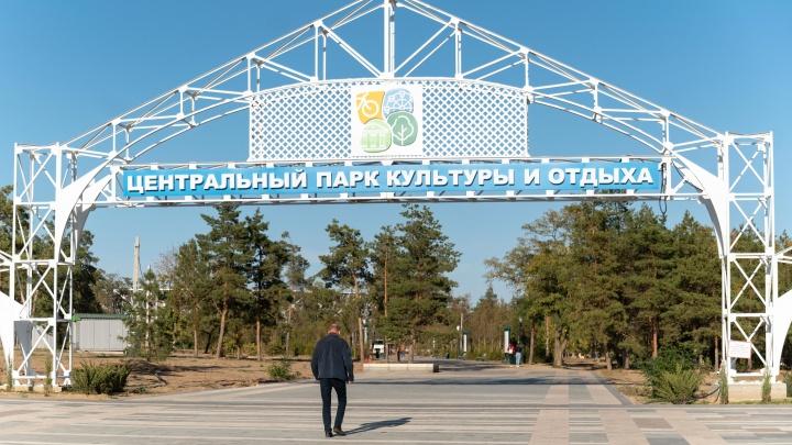 Скелет на входе, траншеи и мёртвые деревья: смотрим, как продвигается реконструкция волгоградского ЦПКиО