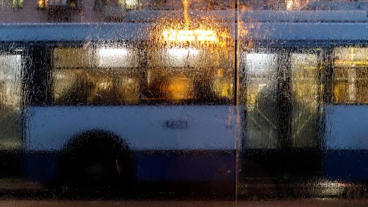 Чтобы пешеходы не скользили: в Волгограде продолжают убирать «мерзкую глазурь» ледяного дождя
