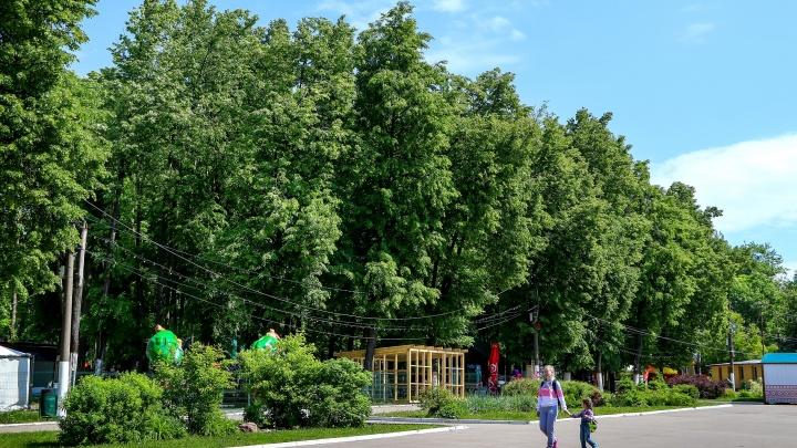 Благоустройством парка «Швейцария» займётся питерская компания за 3,72 млрд рублей