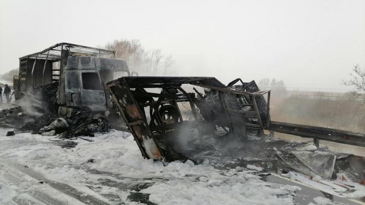 Трое погибли: стала известна причина ДТП с пожаром на М-5 в Самарской области