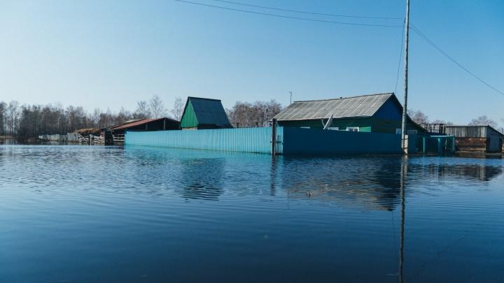 Мангутский тупик: фоторепортаж из затопленного села, в котором по улице плавают выдры