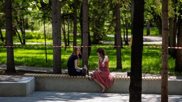 Власти решили открыть часть парков в Новосибирске. Рассказываем, какие будут всё ещё закрыты