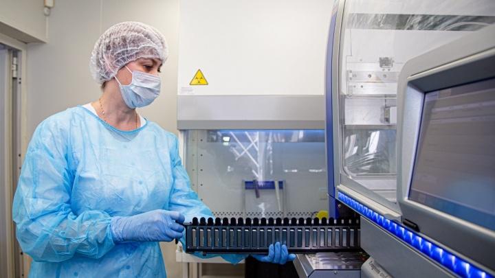 В Зауралье подтверждать анализы на коронавирус начнут внутри региона