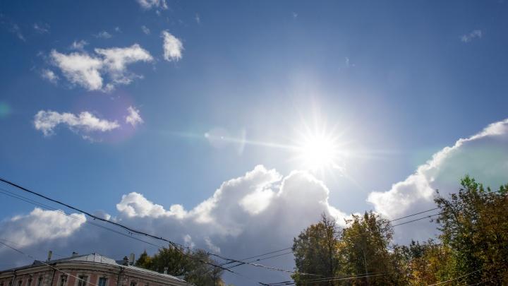 Лето вернётся: синоптики рассказали, когда ждать тепло