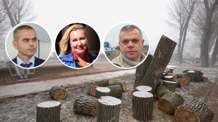 «Ростовчане живут, как в пустыне»: от массовой вырубки деревьев поможет новый закон. И много денег