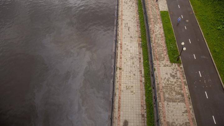 В Ярославле на Волге расплылось нефтяное пятно: как это объяснили власти
