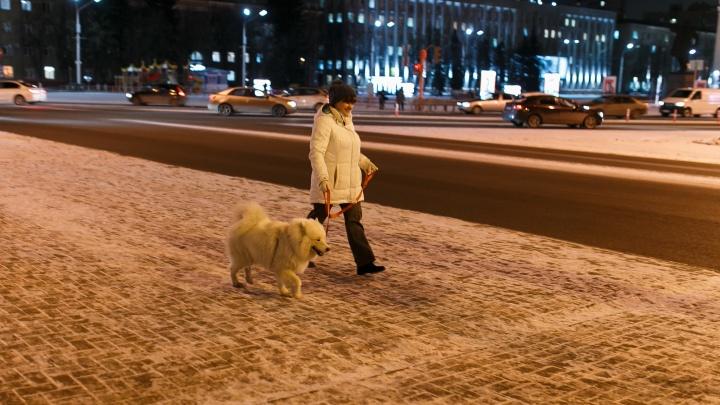 Синоптики Кузбасса рассказали, чего ждать от погоды в понедельник