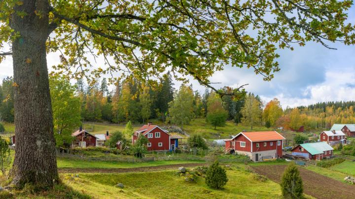 «А дел-то по горло!»: 7 способов превратить дачу в современный загородный дом