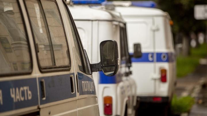 «Выстрелил и скрылся»: в Ярославской области разыскивают убийцу собаки
