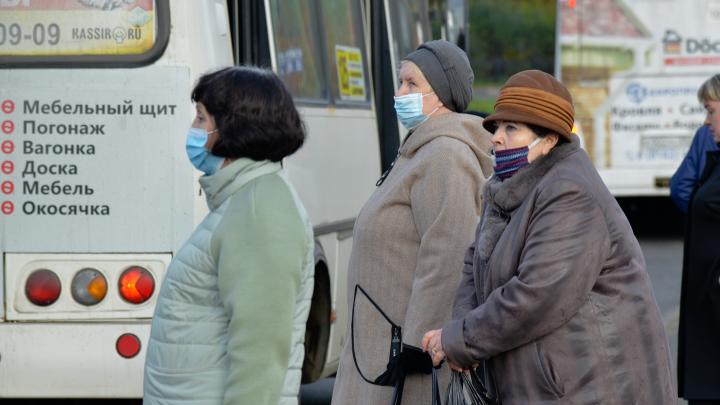 В Архангельской области зафиксировали 195 случаев COVID-19 за сутки