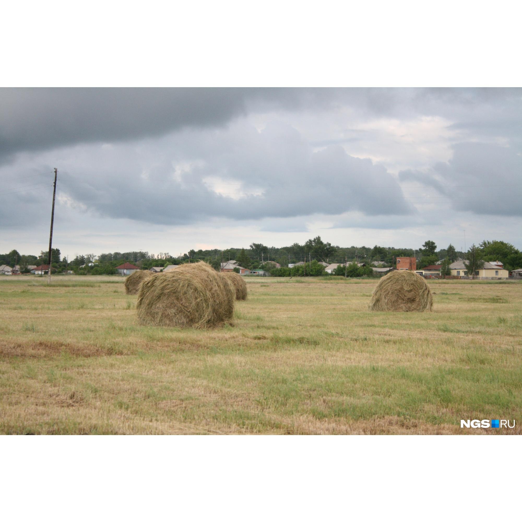 У жителей сел есть автомобили и сельхозтехника. Для всего этого нужно доступное топливо