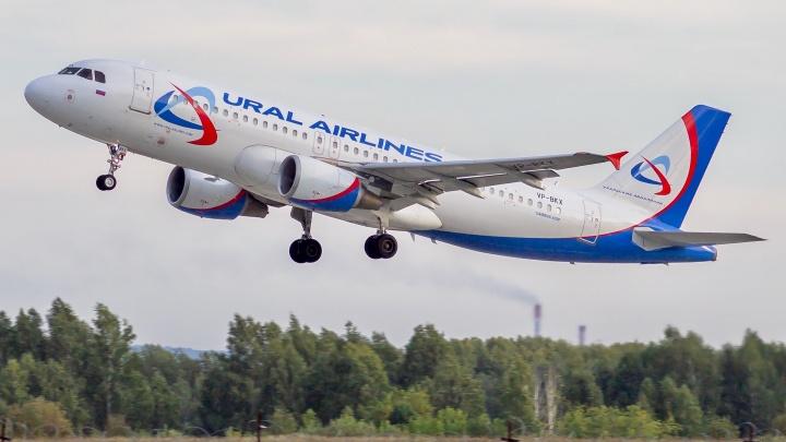 Выехал на полосу, но не взлетел: в самолете Кемерово — Симферополь нашли технические неполадки