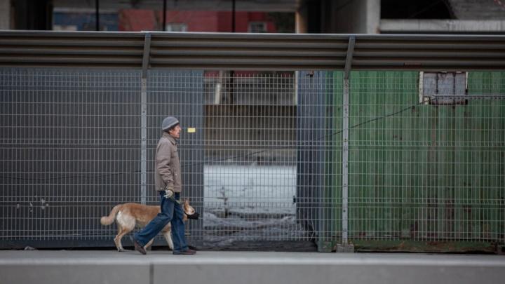 Трёх новосибирцев оштрафовали на 15 тысяч за нарушение самоизоляции — рассказываем, где их задержали