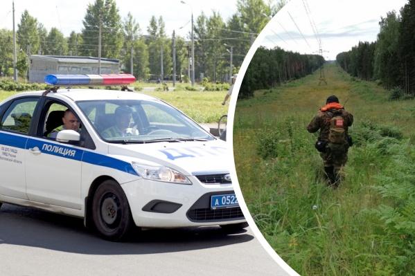 В Ярославской области за год пропадают десятки людей. К счастью, благодаря полиции и добровольцам, многие всё-таки находятся